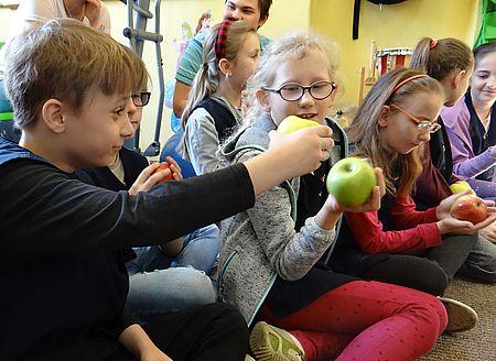 jablka2018warsztaty